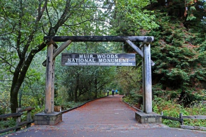 Muir Woods National Monument Travel Tips for an epic park just North of San Francisco, California. Check out these travel tips for information on hiking, photography, what it costs, shuttle service & parking plus much more! #muirwoods #muirwoodsnationalmonument #sanfrancisco #california