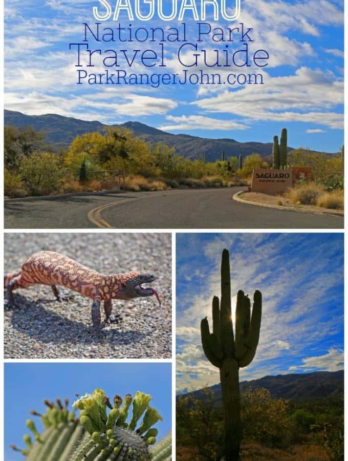 Saguaro National Park Travel Guide