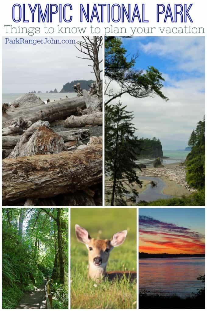 Olympic National Park Travel Tips Park Ranger John