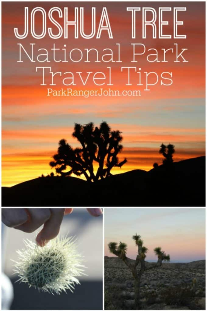 What you need to know to plan an amazing bucket list vacation to Joshua Tree National Park in California. What to pack, what to make sure you have, travel tips, safety, things to do and so much more! Get ready for a fun adventure!