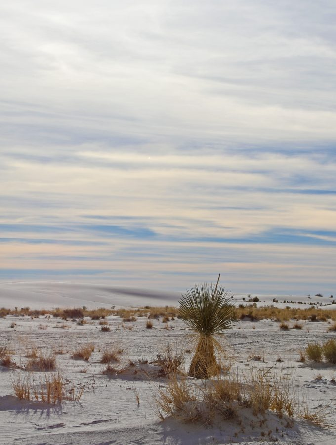Planning a trip to White Sands National Monument New Mexico! White Sands National Monument Travel Tips for info on camping, what to do, visitor centers, hours and more #whitesands #whitesandsnationalmonument #whitesandstraveltips #nationalpark