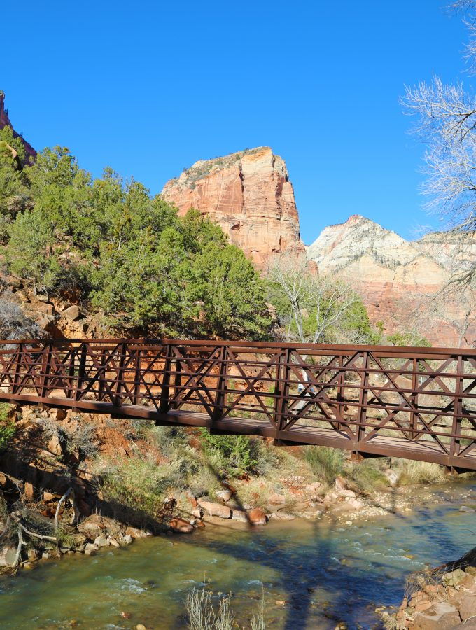 13 Zion National Park Hikes