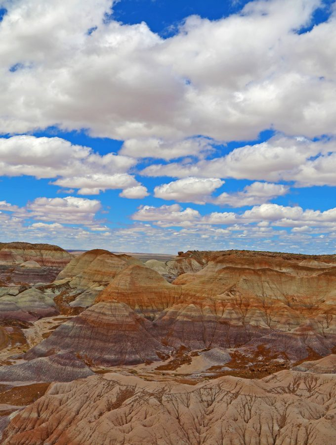 Seven Things to do in Petrified Forest National Park
