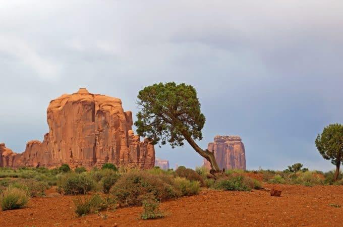 Monument Valley Navajo Tribal Park Travel Tips