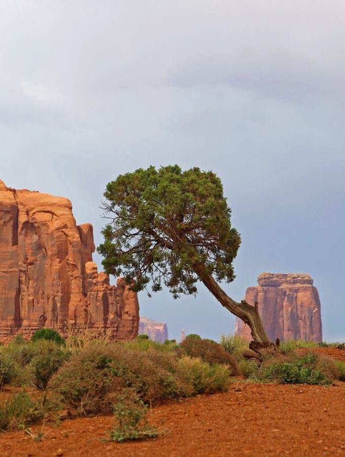 Monument Valley Navajo Tribal Park Travel Tips