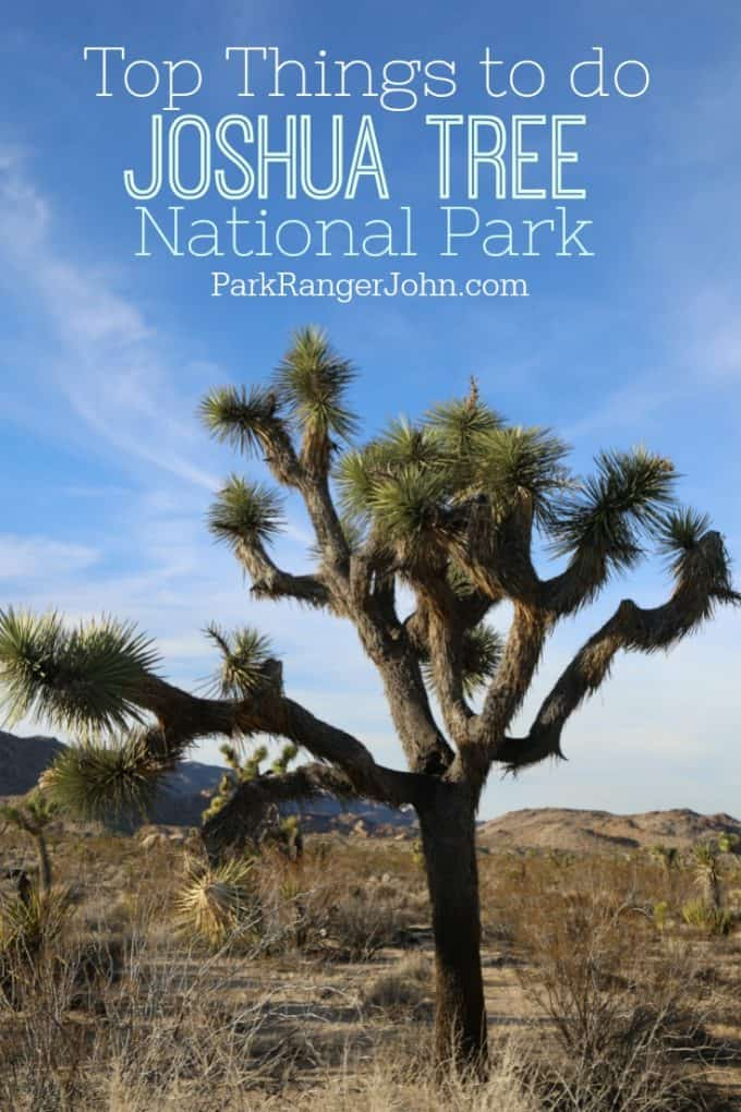 Top things to do in Joshua Tree National Park in California! Hiking, camping, rock climbing, sunsets, and so much more! A great day trip from Palm Springs. You won't believe all there is to see and do! 