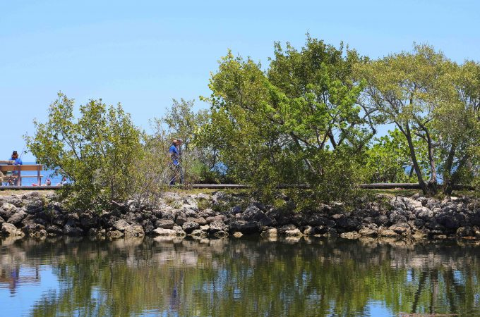 Things to do Biscayne National Park