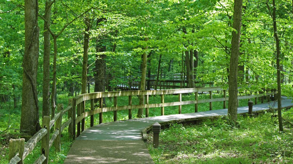 Things to do Mammoth Cave National Park in Kentucky USA. This bucket list destination with pictures has hiking, camping, canoeing on the Green and Nolin Rivers and many other adventures for the whole family.