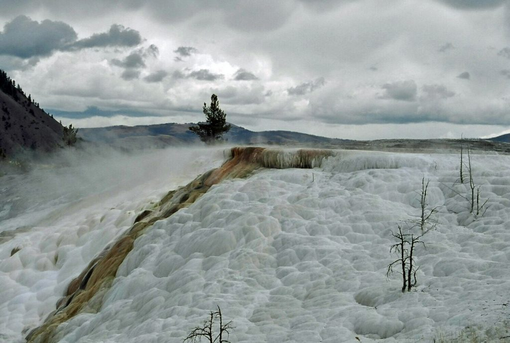 Yellowstone National Park Facts. Here are some fun facts about that National Park Bucketlist adventure! Fun and educational for the whole family!