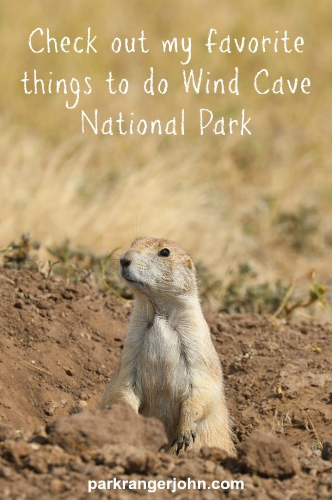 Things to do Wind Cave National Park. Wind Cave is located in the Black Hills of South Dakota. My list of favorite things to do include cave tours, hiking, exploring neighboring parks and viewing wildlife like buffalo and prairie dogs. #windcave #nationalpark #cave #southdakota