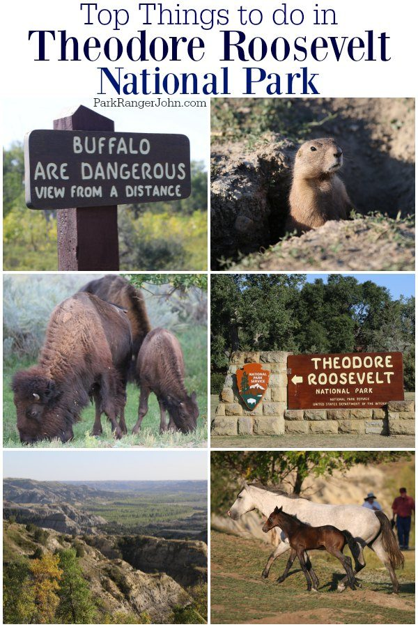 Top Things to do in Theodore Roosevelt National Park
