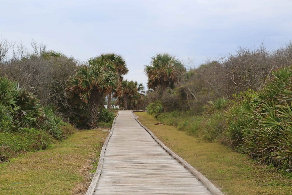Explore Canaveral National Seashore and Meritt Island National Wildlife Refuge with beautiful beaches, epic sunrises, incredible wildlife viewing and much more! #canaveral #beaches #florida #nationalseashore