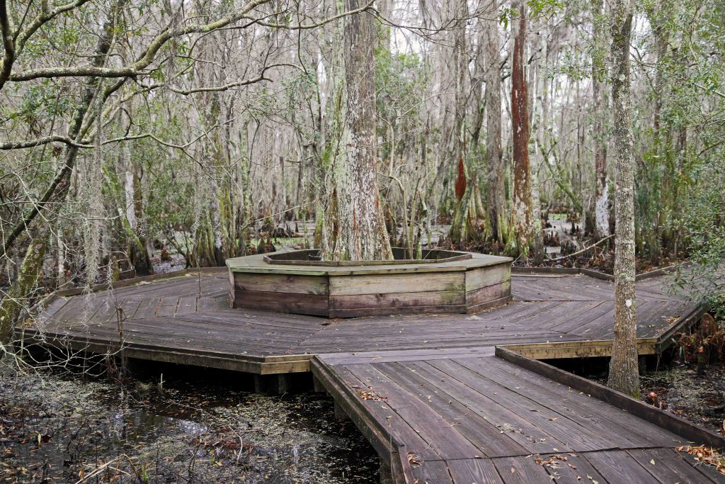 Jean Lafitte National Historical Park and Preserve lies within the French Quarter of New Orleans, Louisiana as well as several 5 other locations surrounding this incredible city #NOLA #NPS #JeanLafitteNPS #jlswamptour