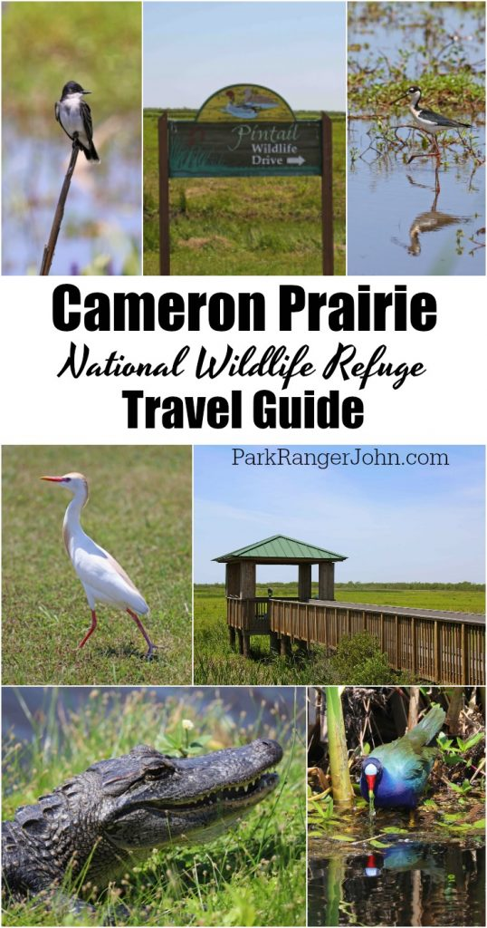Plan your perfect trip to Cameron Prairie National Wildlife Refuge in Southwest Louisiana with my things to do, travel tips and much more! #cameronprairie #nationalwildliferefuge #creolenaturetrail #wildlifeviewing
