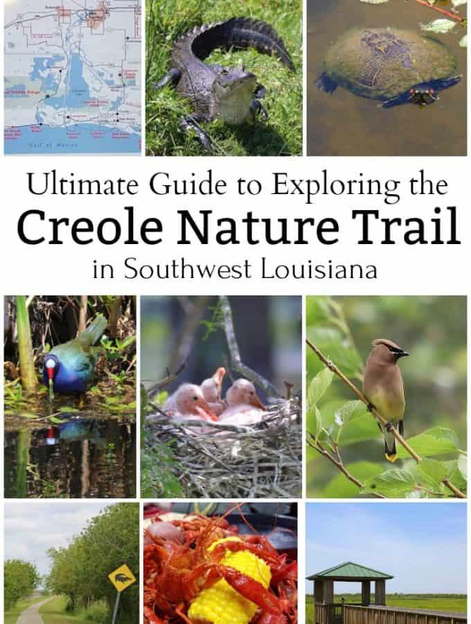 The ultimate guide to exploring the Creole Nature Trail in Southwest Louisiana #creolenaturetrail #louisiana #Louisianaoutback