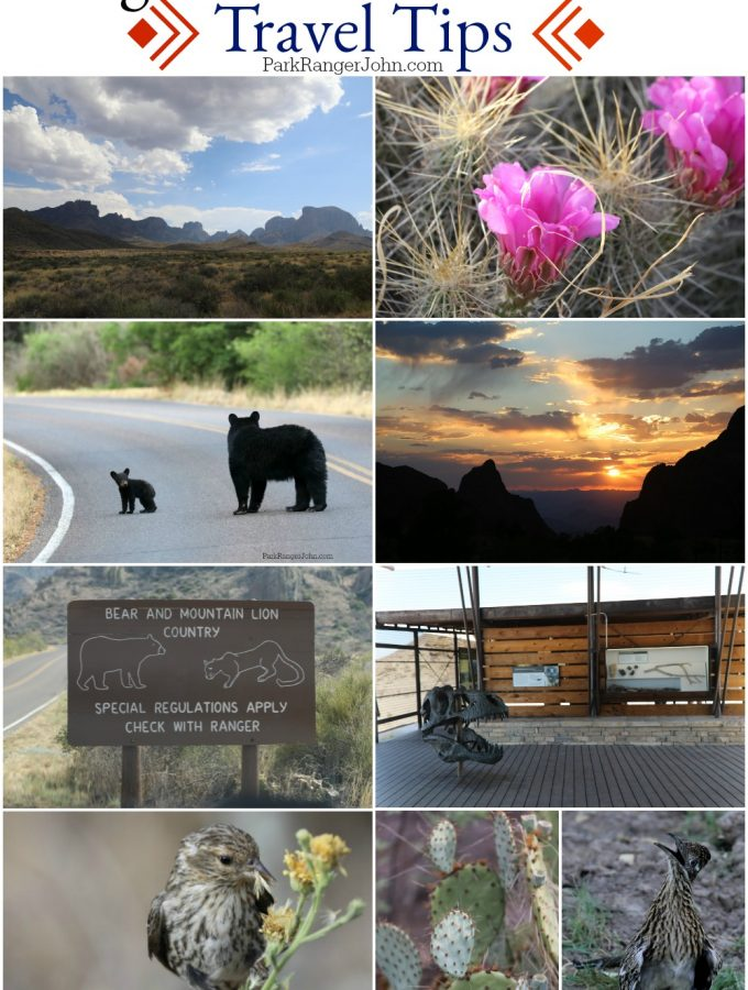 Big Bend National Park Travel Tips