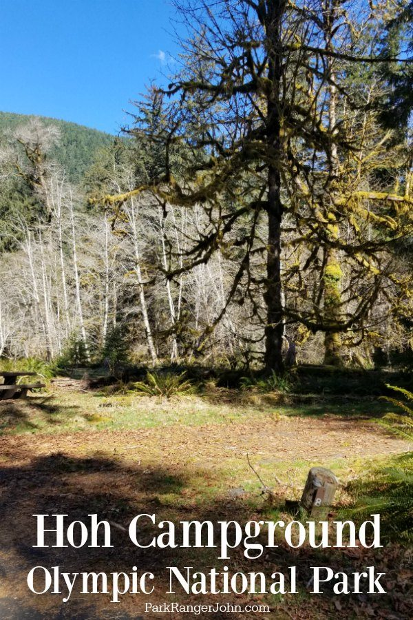 Hoh Campground – Olympic National Park