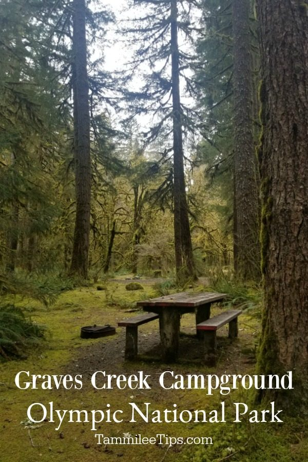 Graves Creek Campground – Olympic National Park