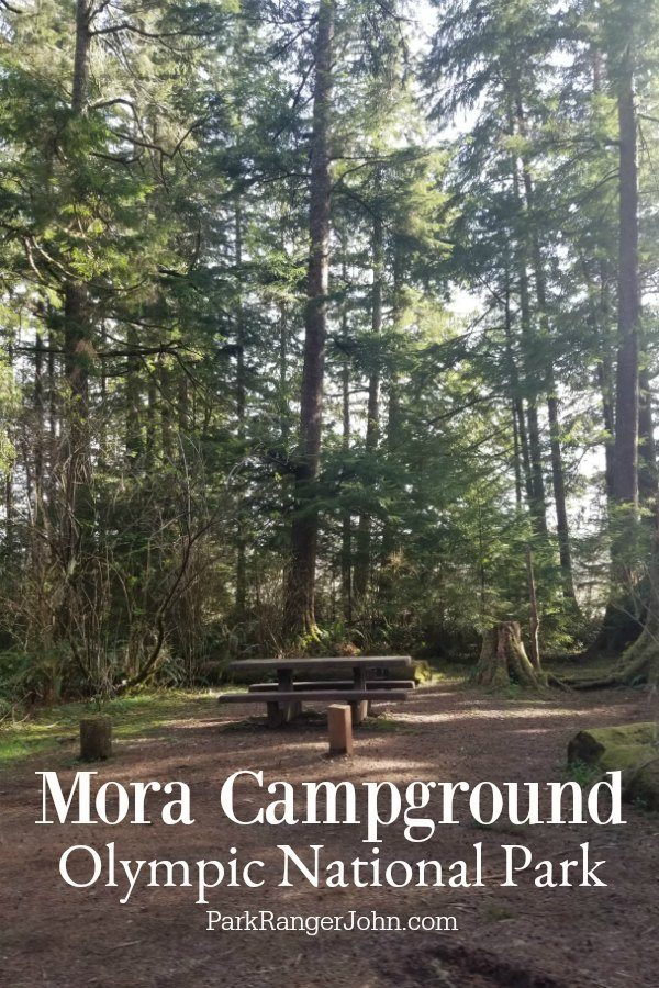 Mora Campground – Olympic National Park