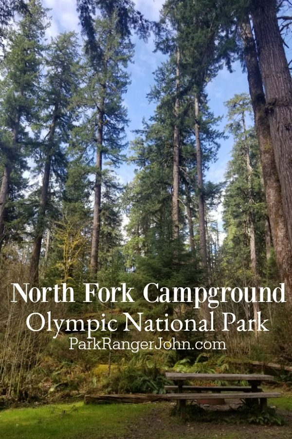 North Fork Campground – Olympic National Park