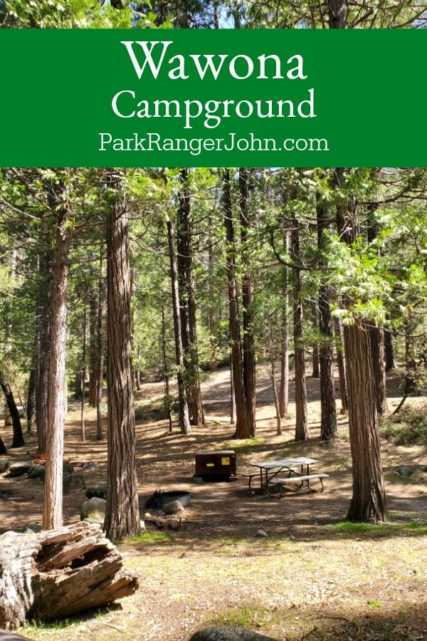 Wawona Campground – Yosemite National Park