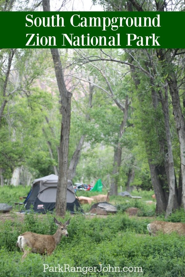 South Campground –  Zion National Park