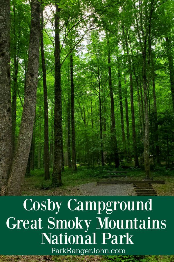 Cosby Campground – Great Smoky Mountains