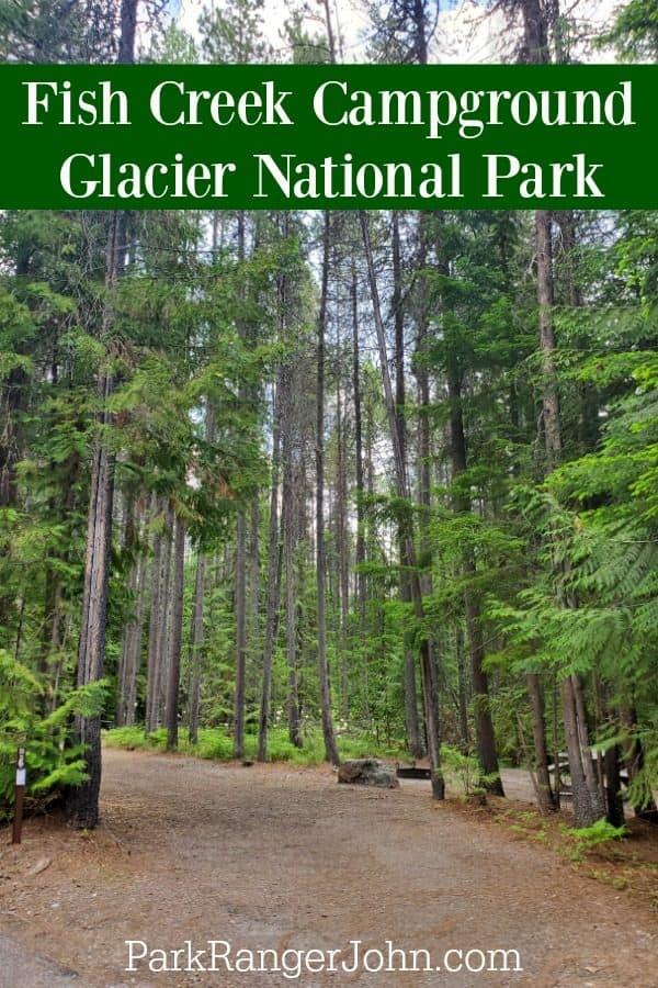Fish Creek Campground – Glacier National Park