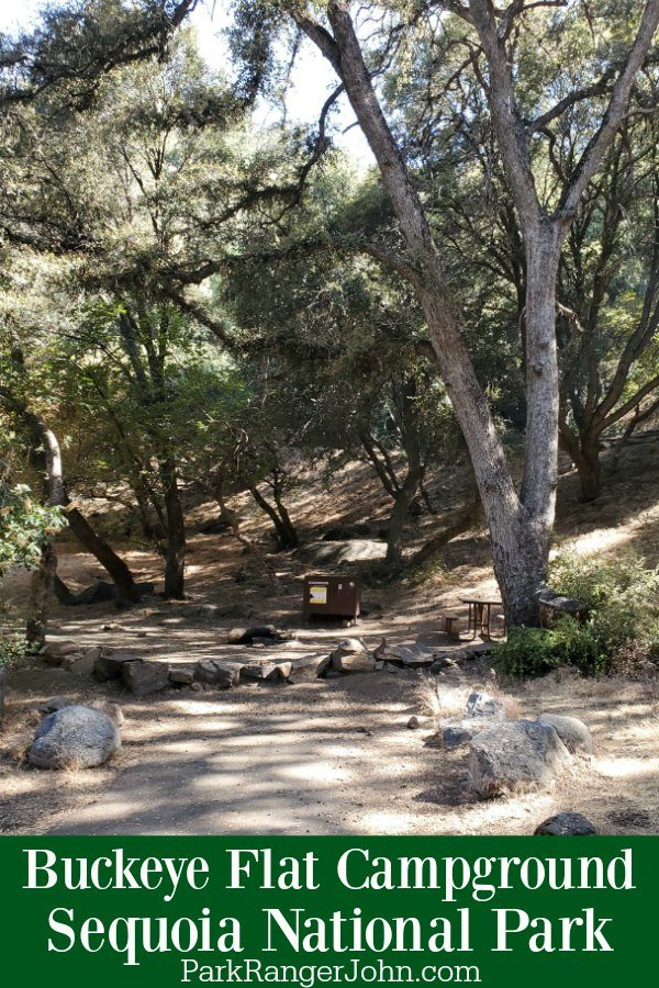 Buckeye Flat Campground – Sequoia National Park