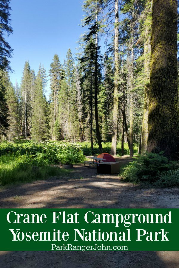 Crane Flat Campground – Yosemite National Park