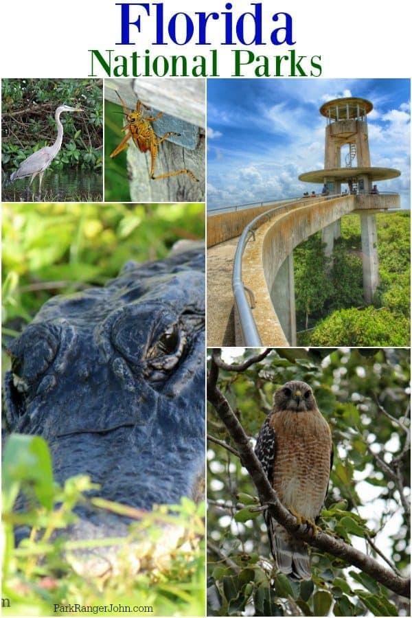 11 Epic National Parks in Florida