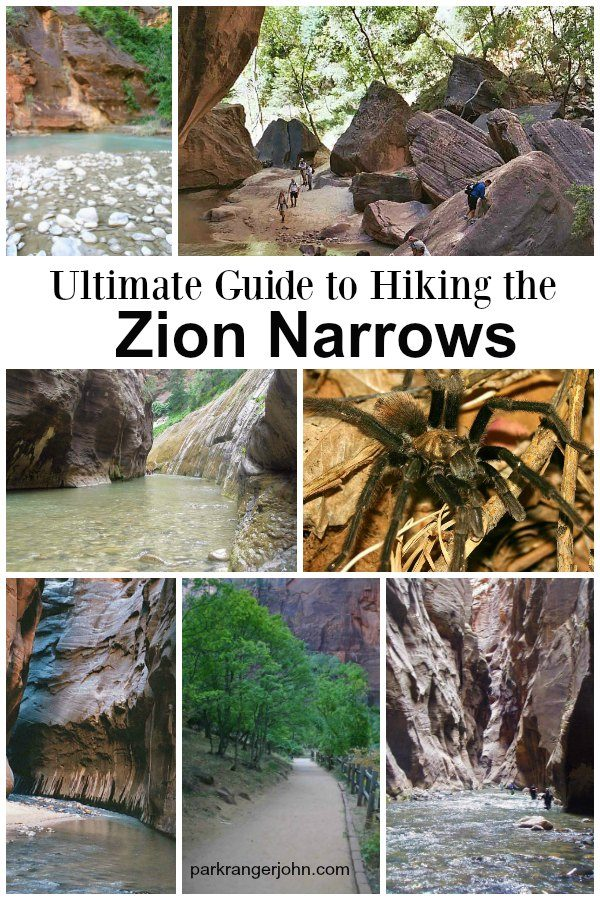 Ultimate Guide to Hiking The Narrows Zion National Park