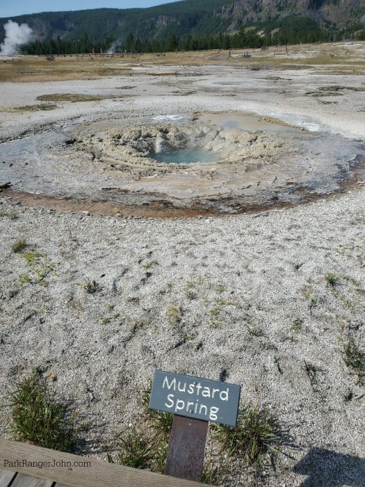 small pool of water in the middle of Mustard Spring with brown/yellow rocks in a circle
